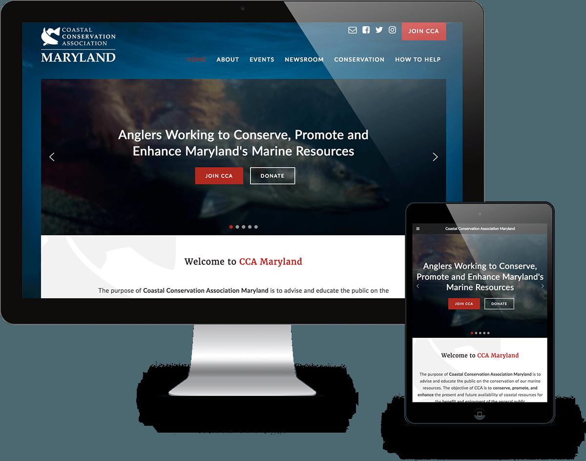 portfolio-devices-ccamd